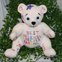 Autograph Doodle Bear Kit with stuffing