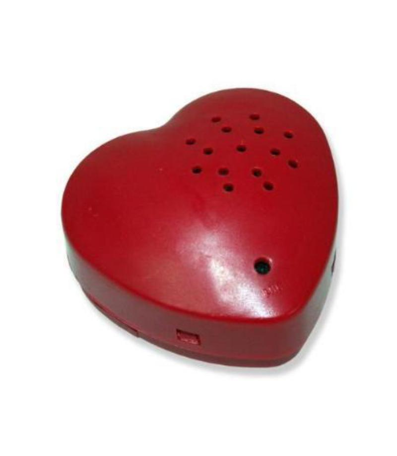 UPGRADE to 30 second HEART SHAPED plush toy voice recorder (Available for purchase only when accompanying any recordable animal purchase)