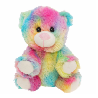 8 Inch Recordable Rainbow Bear with 30 second digital recorder
