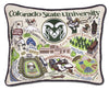 Colorado State University Pillow - CityBarnCountryPenthouse