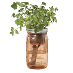 Garden Jar Green - Parsley - CityBarnCountryPenthouse