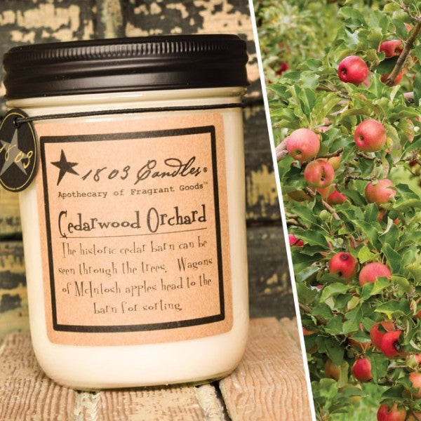 Cedarwood Orchard Soy Jar Candle - CityBarnCountryPenthouse