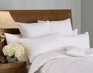 Downright Organa 650+ Organic Goose Down All Year Weight Comforter with Lyocell Shell - CityBarnCountryPenthouse