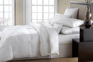 Pillow - Downright Mackenza 560+ White Down Standard Euro Square Pillow - CityBarnCountryPenthouse