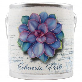 Echeveria Perle Farm Fresh Candle - CityBarnCountryPenthouse