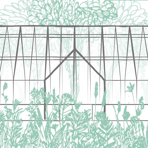 hand drawn image of a greenhouse