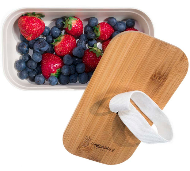 Small Biodegradable lunch box, eco friendly, plastic free, food storage, bamboo fibre