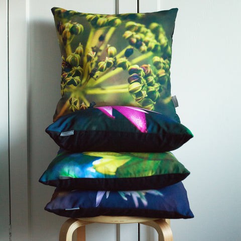 flower photography cushions by Rachel Lucie