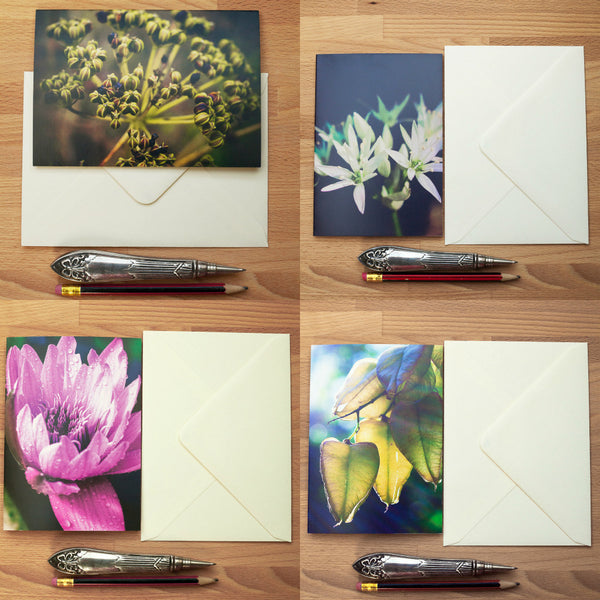 Art Card - Blank - 4 Assorted Nature Greeting Cards