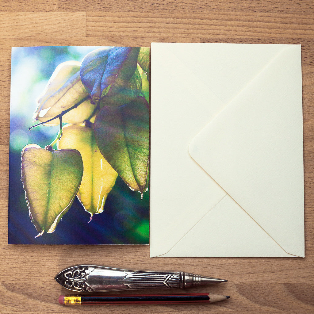 Art Card - Blank - Seed Pod Greeting Card