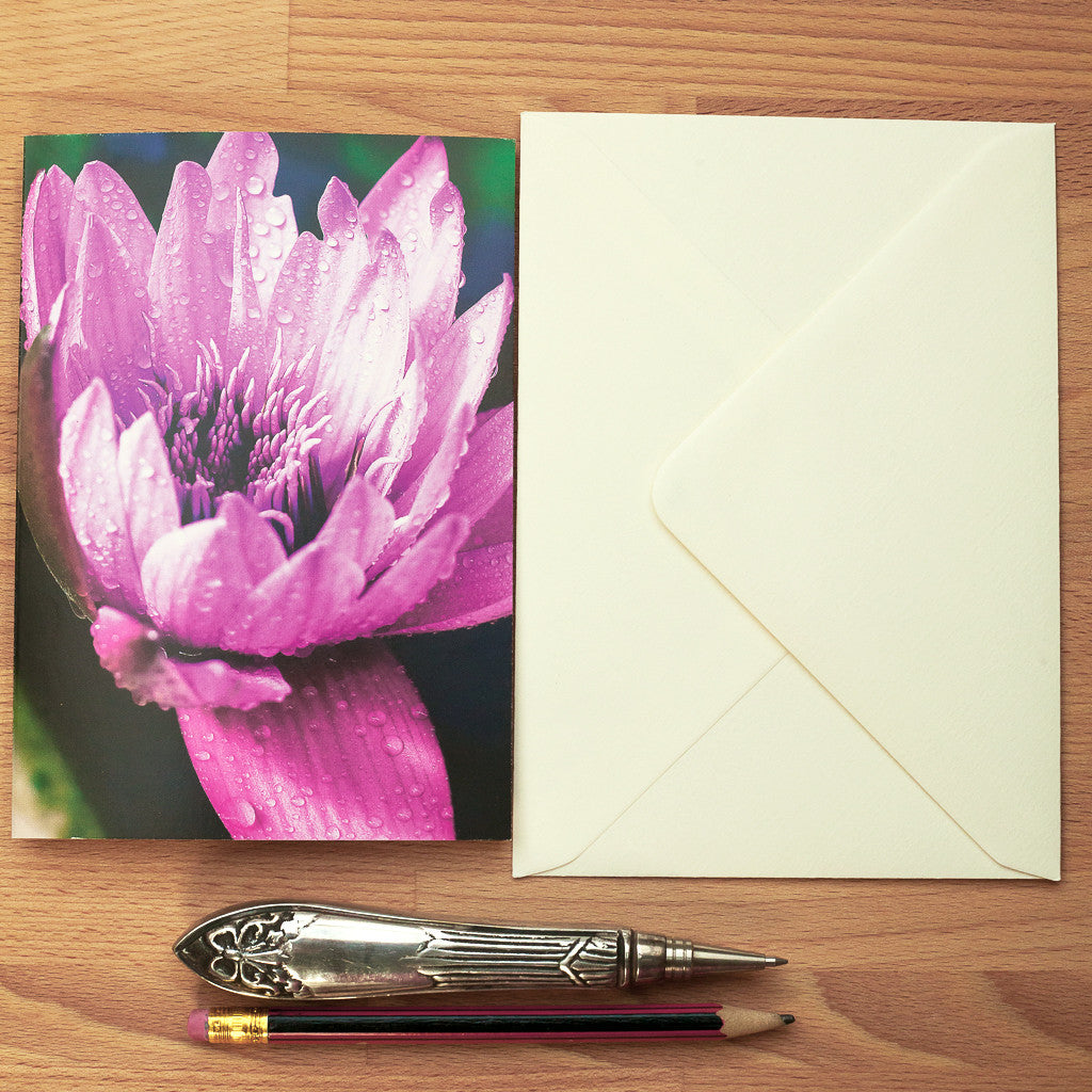 Water lily greeting card rachel lucie art card blank water lily greeting card m4hsunfo