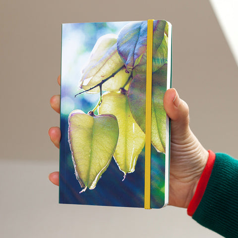 Notebook - Seed Pod Nature Notebook