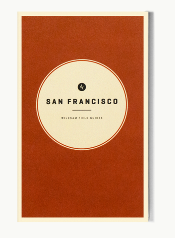 San Fransisco City Guide