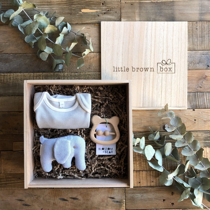 The Mini Blue New Baby Gift Box