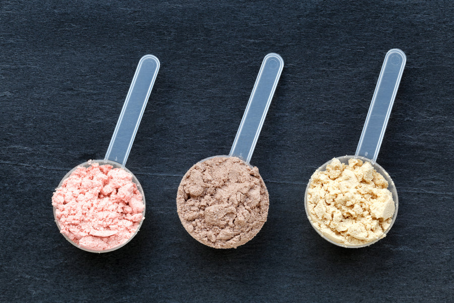 How to Choose the Right Protein Powder For You