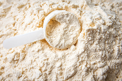benefits of cold pressed protein powder