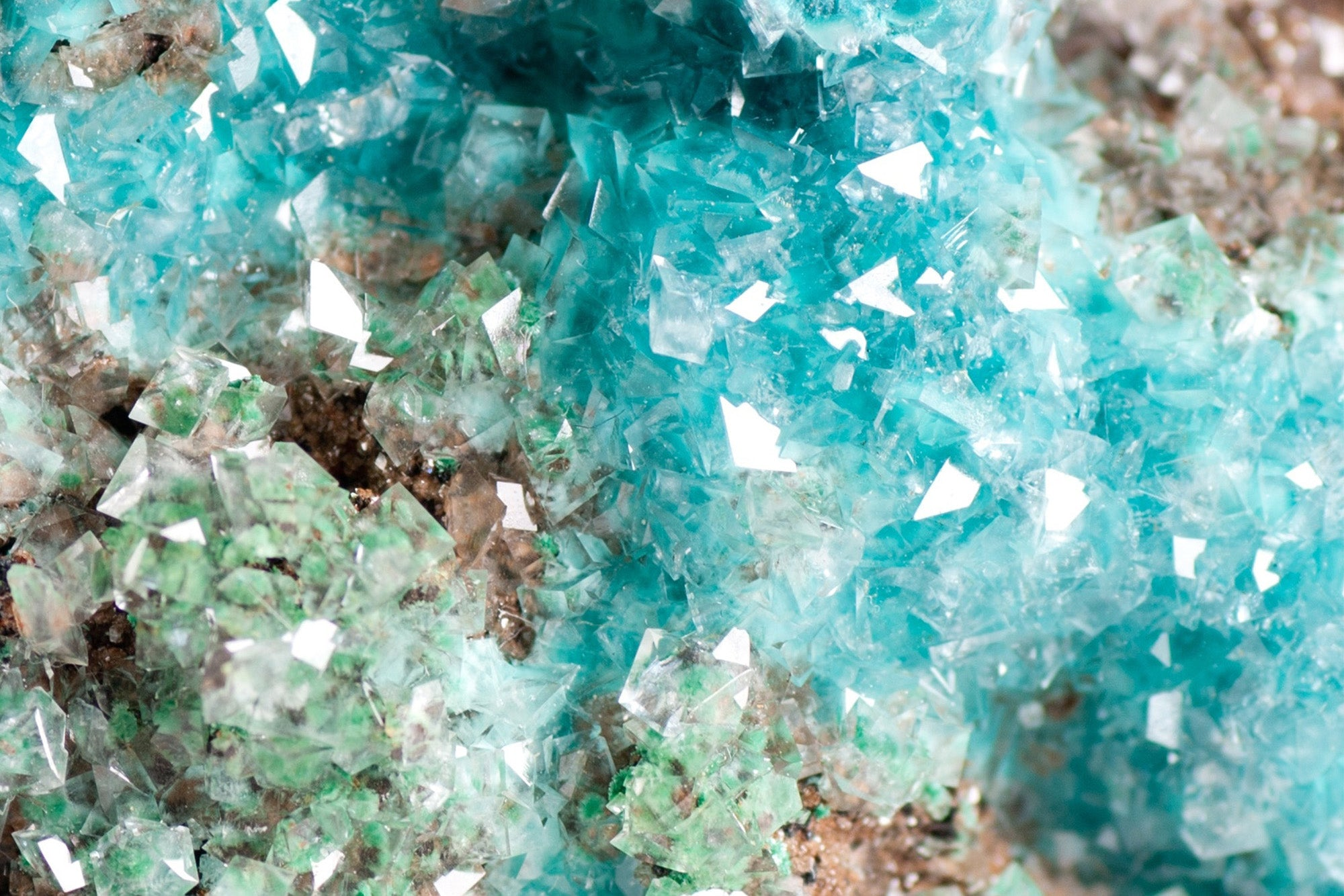 Rosasite Stone: History, Formation, & Metaphysical Properties