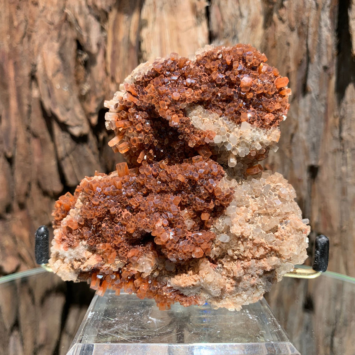 9.5cm 214g Aragonite from Morocco