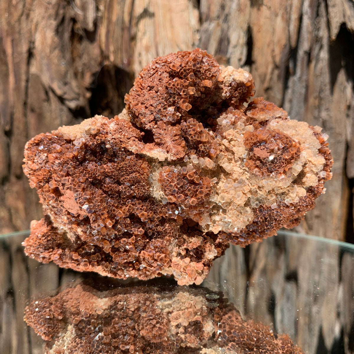 10.5cm 314g Aragonite from Morocco
