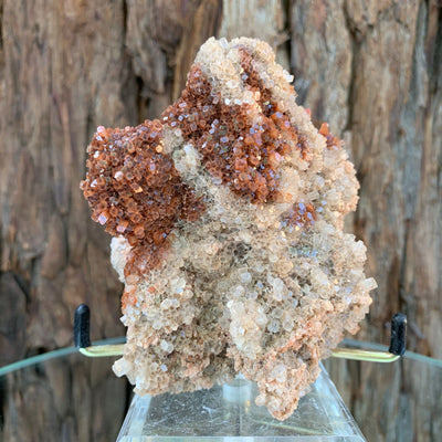 9.5cm 304g Aragonite from Morocco