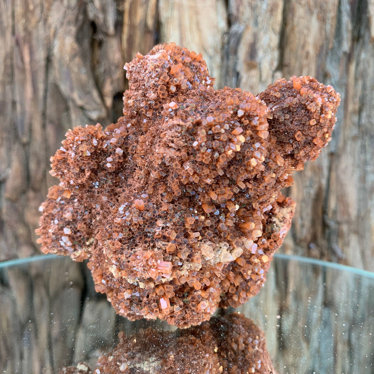 10cm 256g Aragonite from Morocco