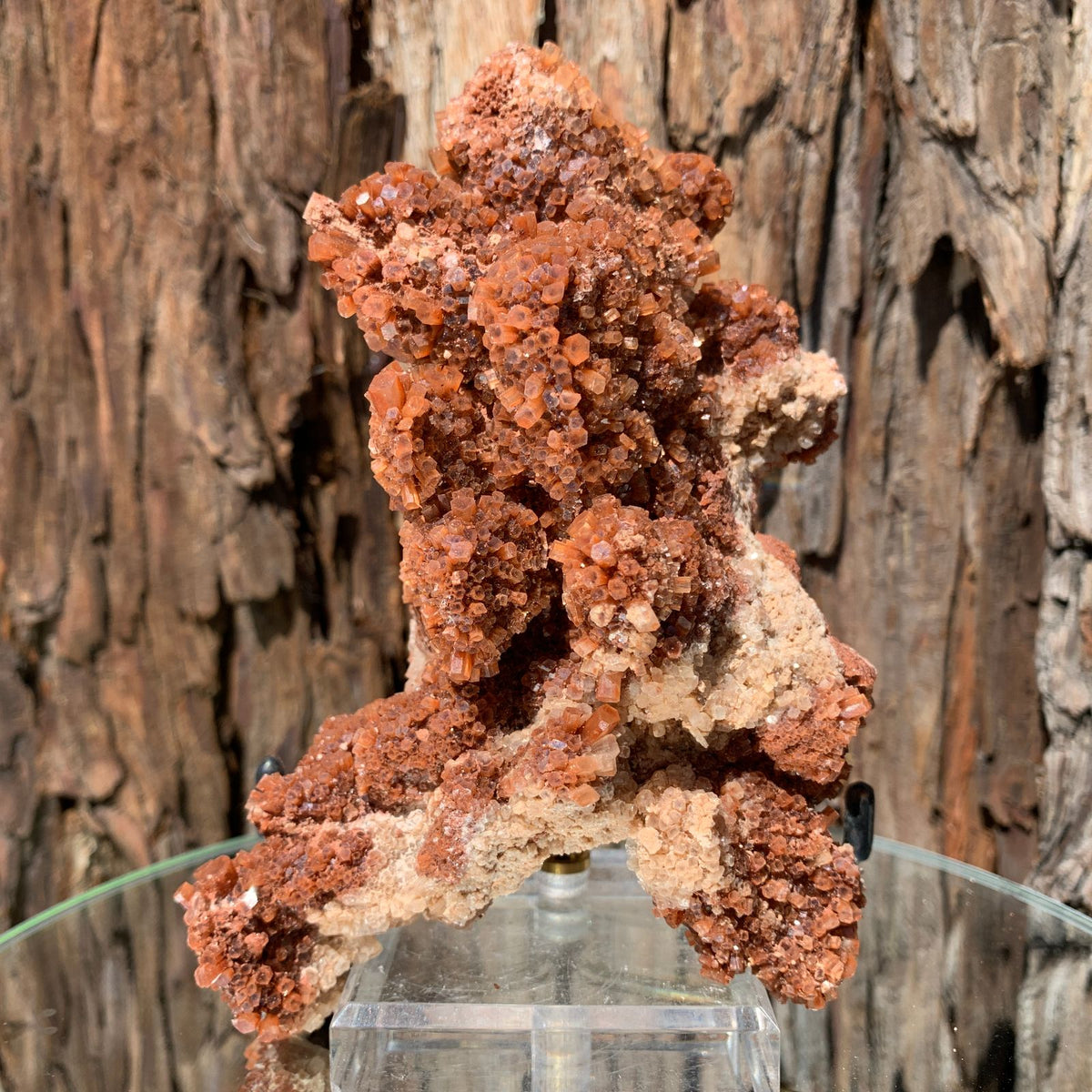 15cm 546g Aragonite from Morocco