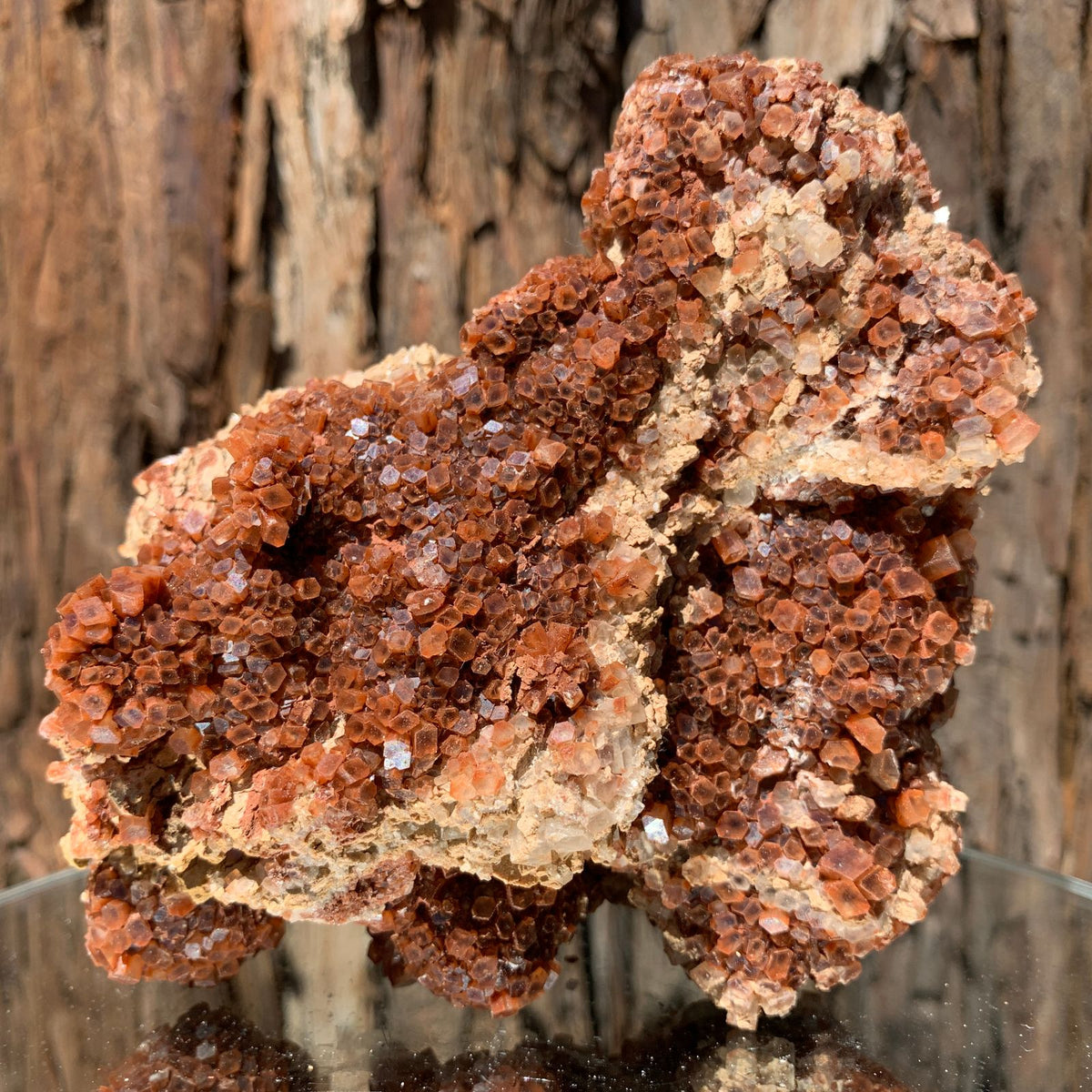 14.7cm 768g Aragonite from Morocco