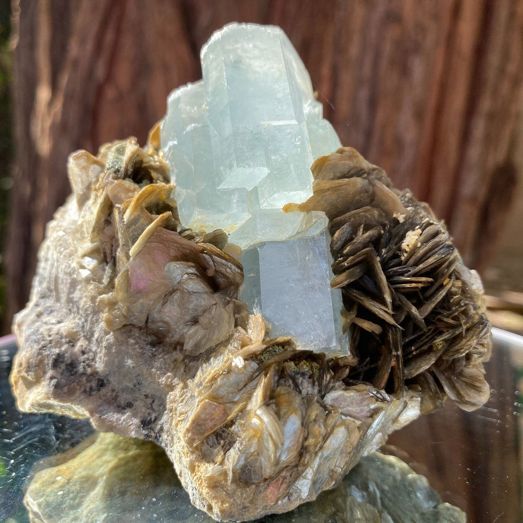 10cm 520g Aquamarine and Muscovite from Hunza Nagar, Pakistan