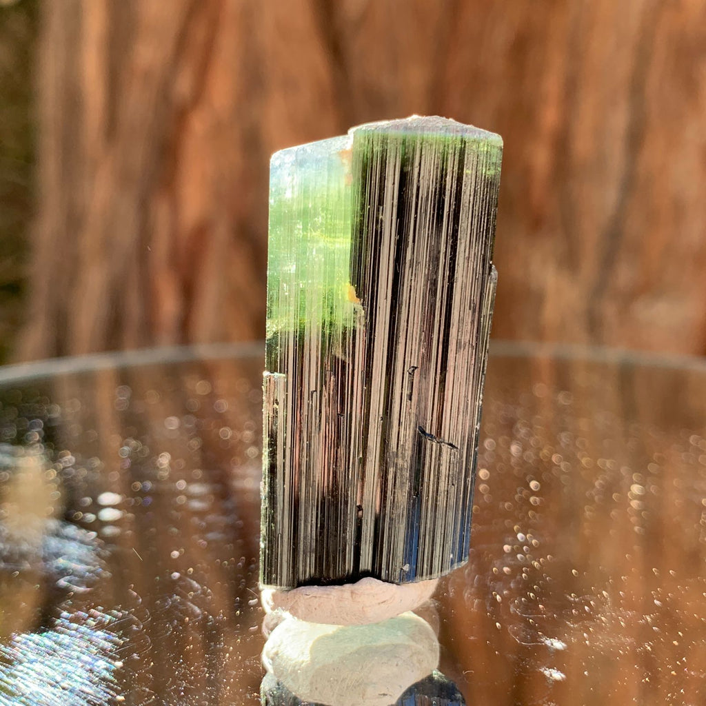 4cm 19g Green Cap Tourmaline from Stak Nala, Skardu, Pakistan