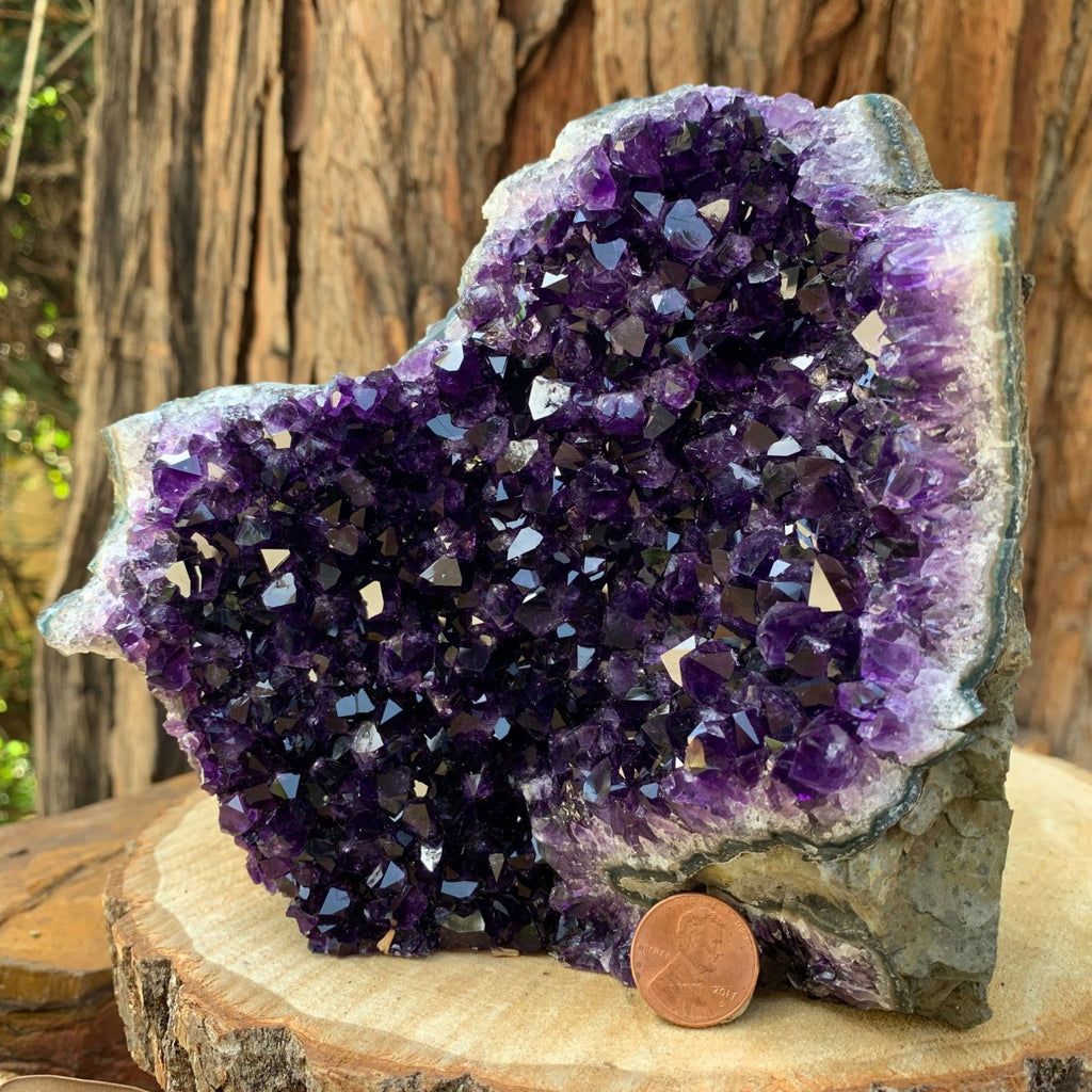 15.7cm 1.55kg  Amethyst Crystal Cluster in Geode from Uruguay