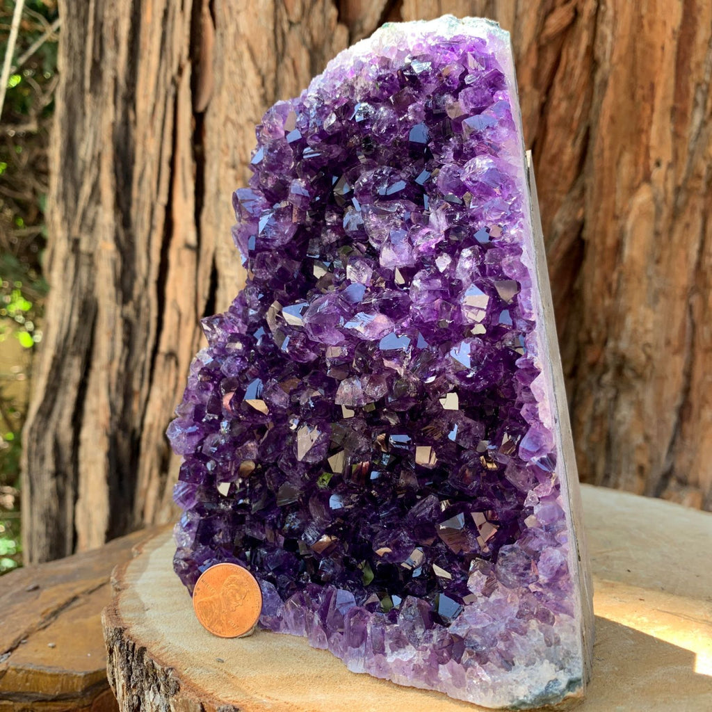 16.1cm 1.57kg  Amethyst Crystal Cluster in Geode from Uruguay