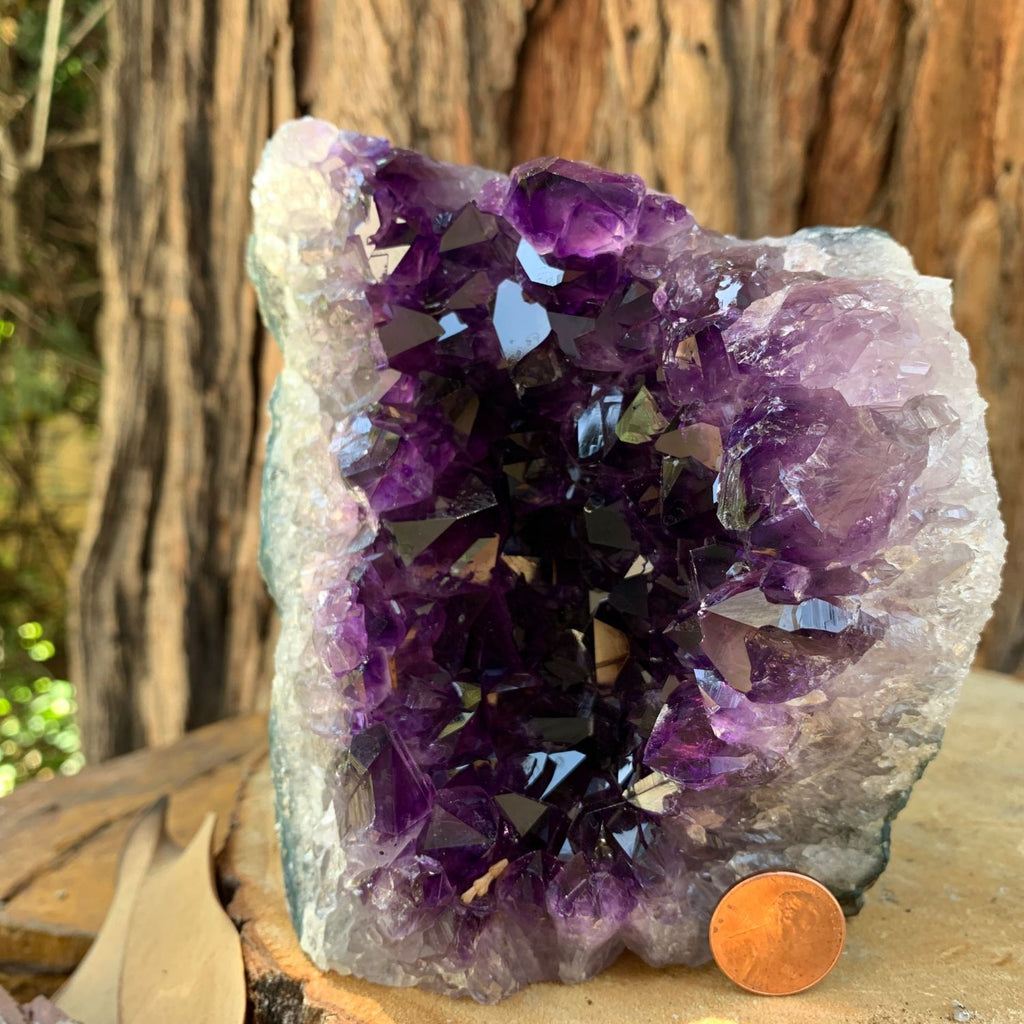 12.6cm 1.62kg  Amethyst Crystal Cluster in Geode from Uruguay