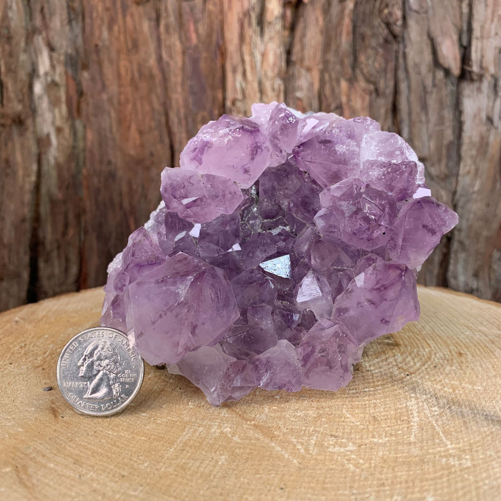 11.5cm 816g Amethyst in Geode from Brazil