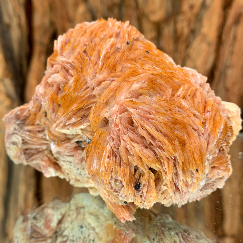 8.5cm 538g Barite, Cerrusite from Mibladen, Morocco