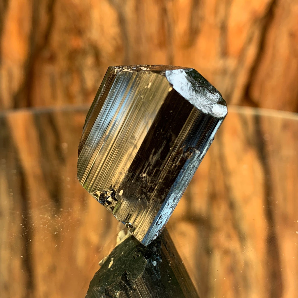 3.5cm 38g Black Tourmaline, Muscovite from Skardu, Pakistan