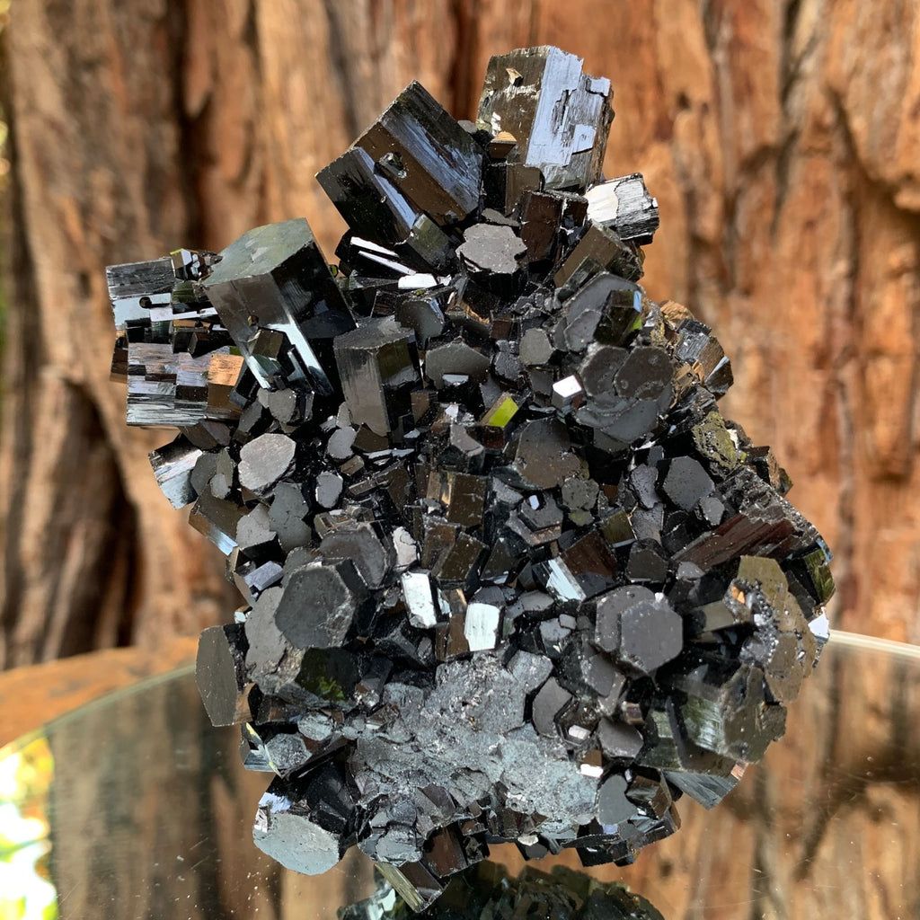 10cm 602g Black Tourmaline from Erongo Mountains, Namibia