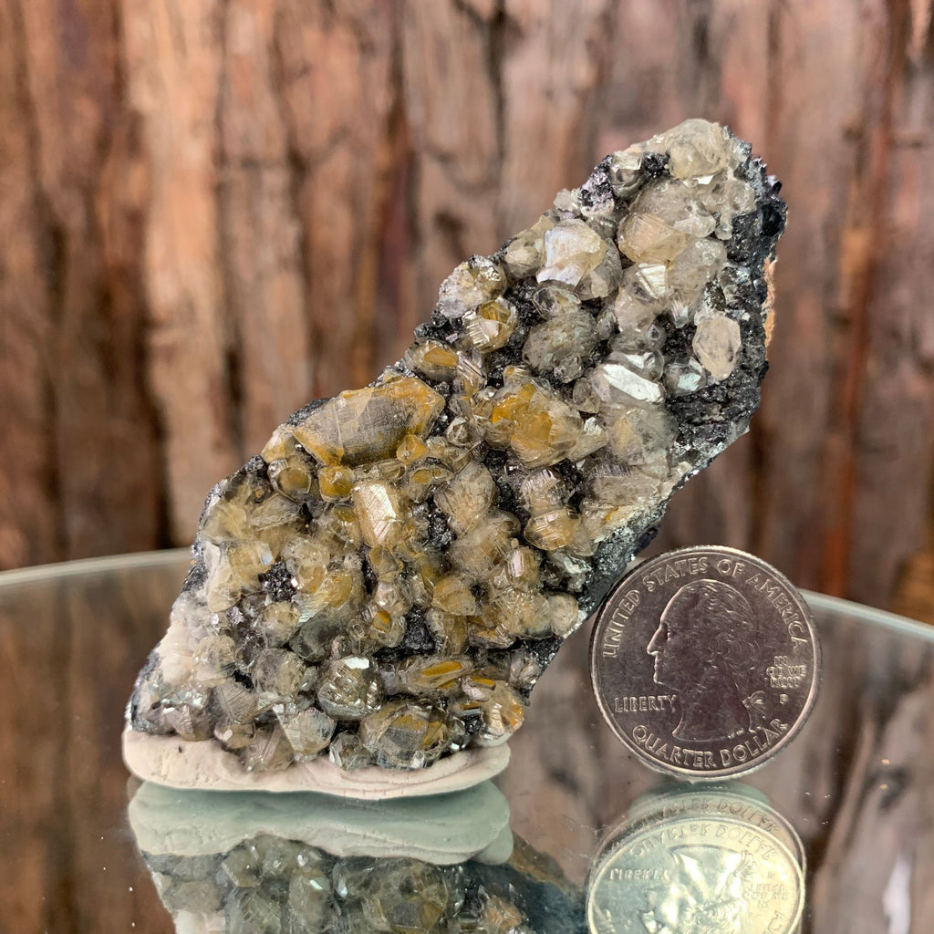 8.5cm 146g Cerussite on Galena from Mibladen, Morocco
