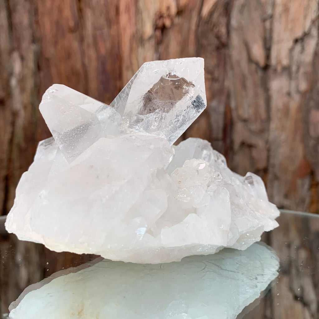 11.5cm 342g Clear Quartz from Brazil