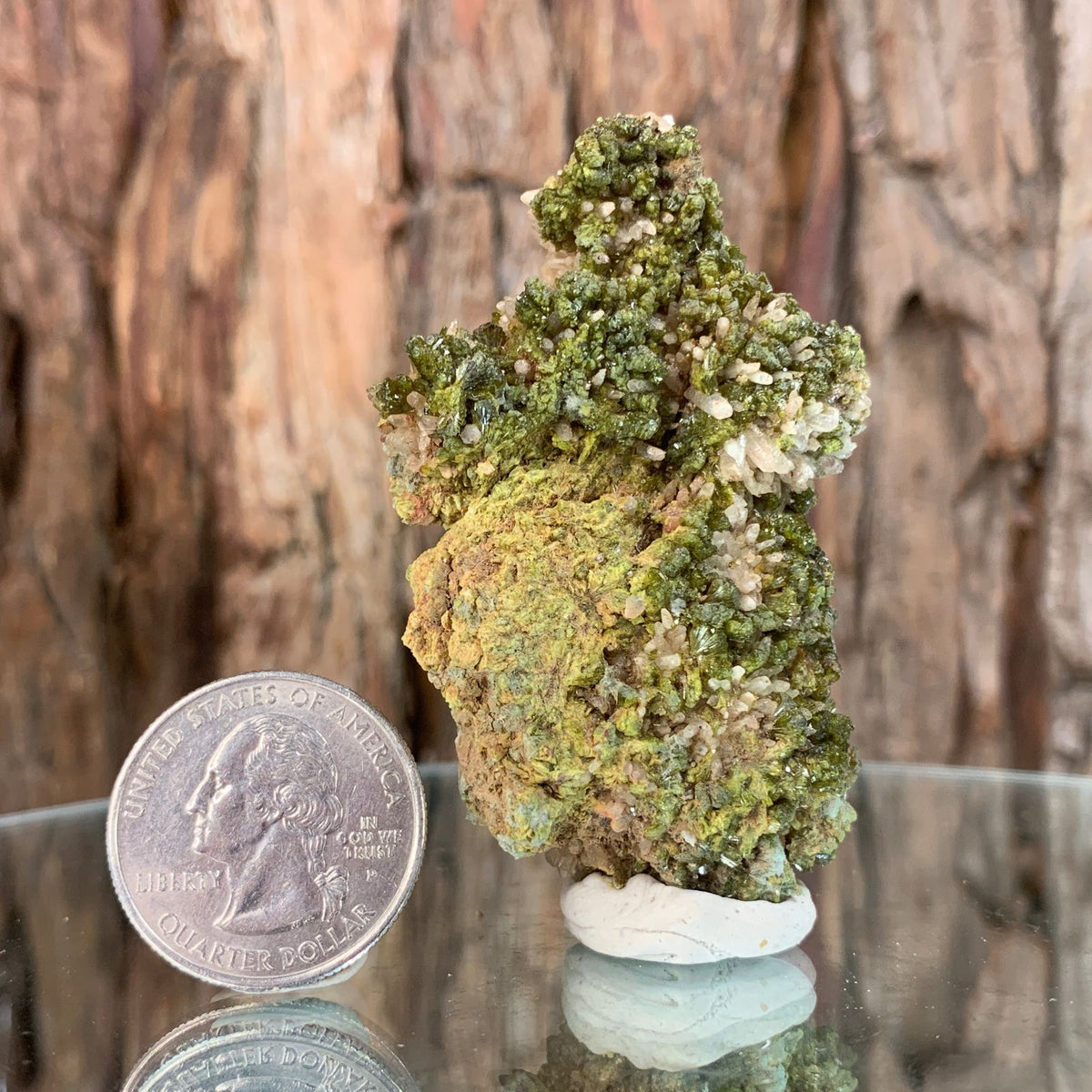 6.5cm 60g Epidote, Clear Quartz from Morocco