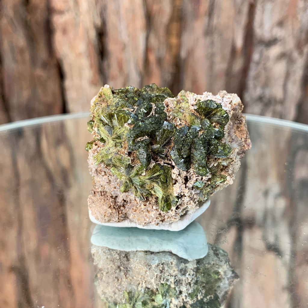4.5cm 48g Epidote, Clear Quartz from Morocco