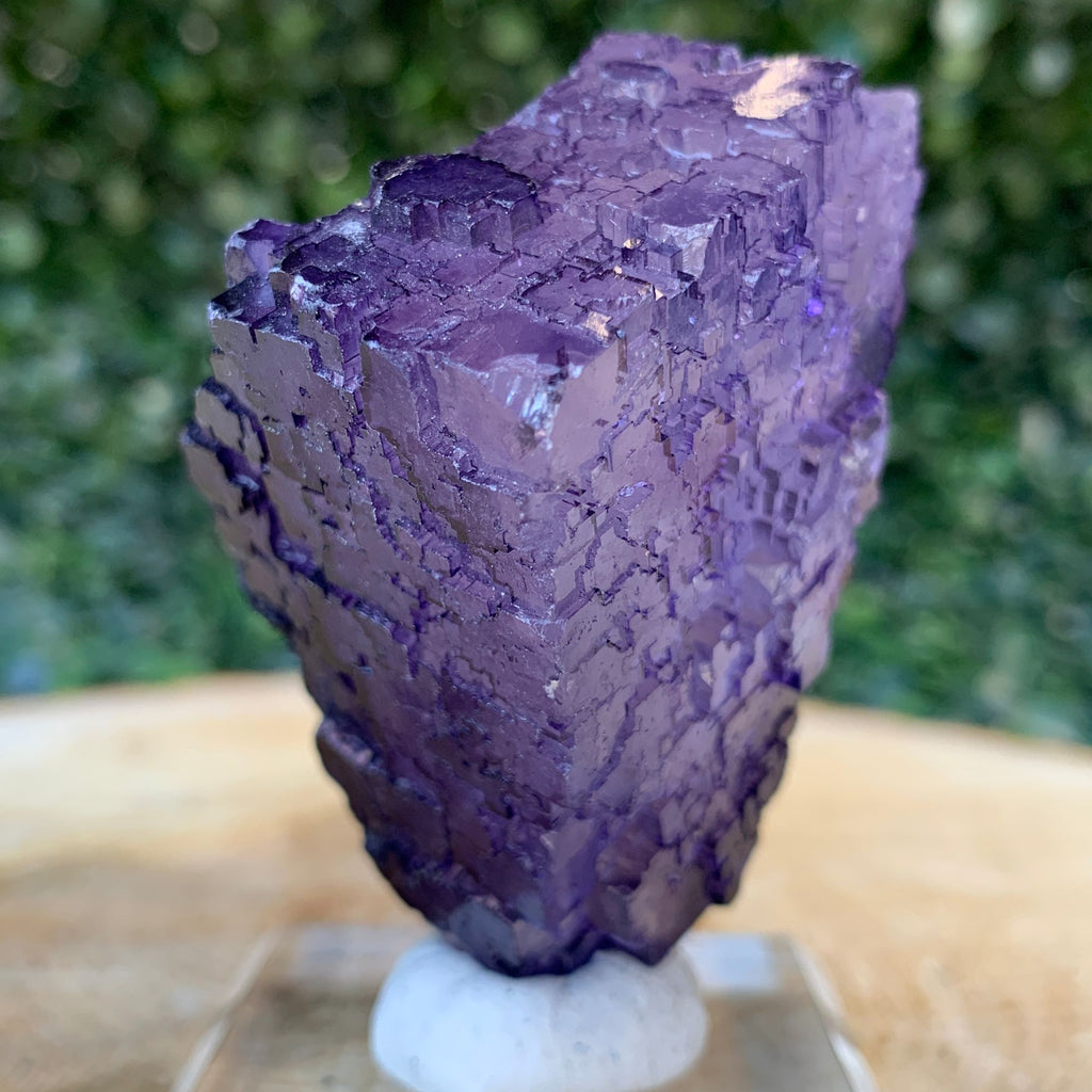 108g 6.5cm Purple Fluorite Crystal Mineral Specimen from Coahuila, Mexico