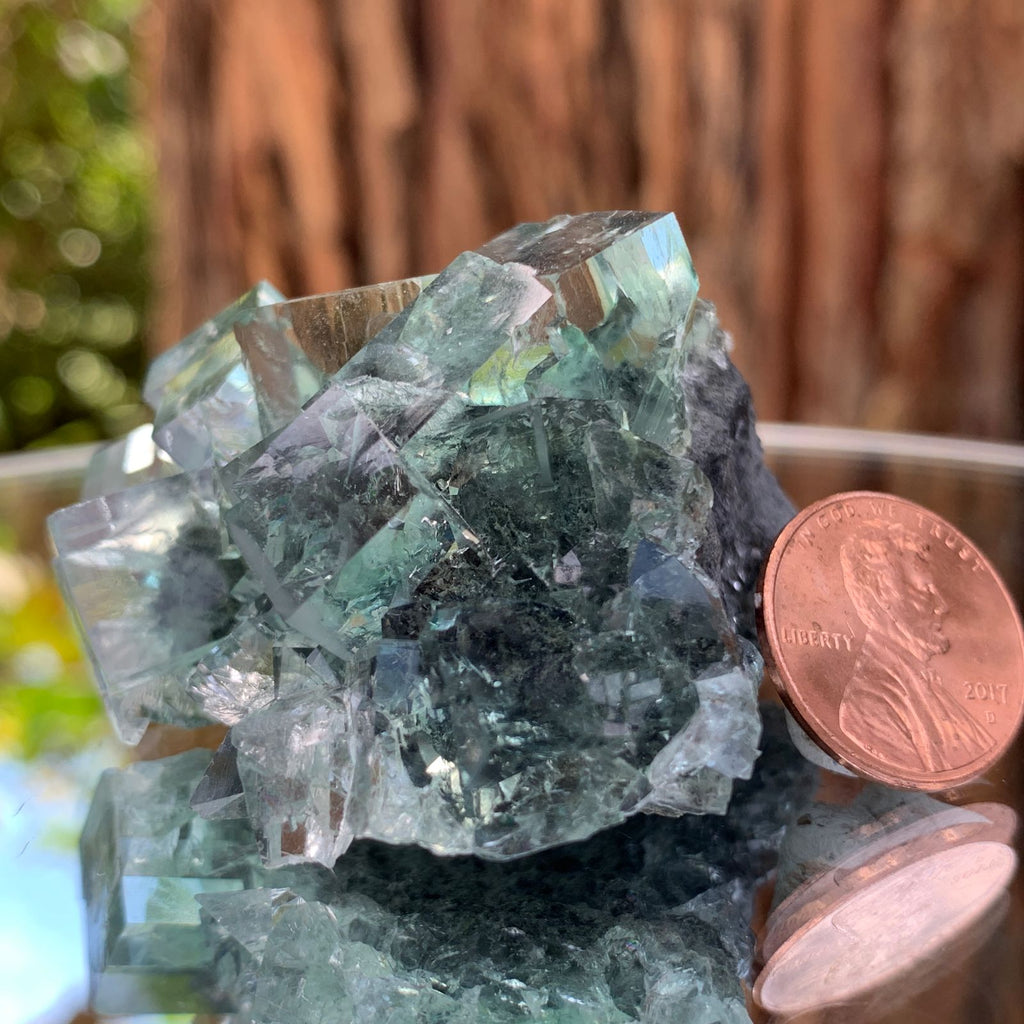 5cm 80g Clear Green Fluorite from Xianghualing, China