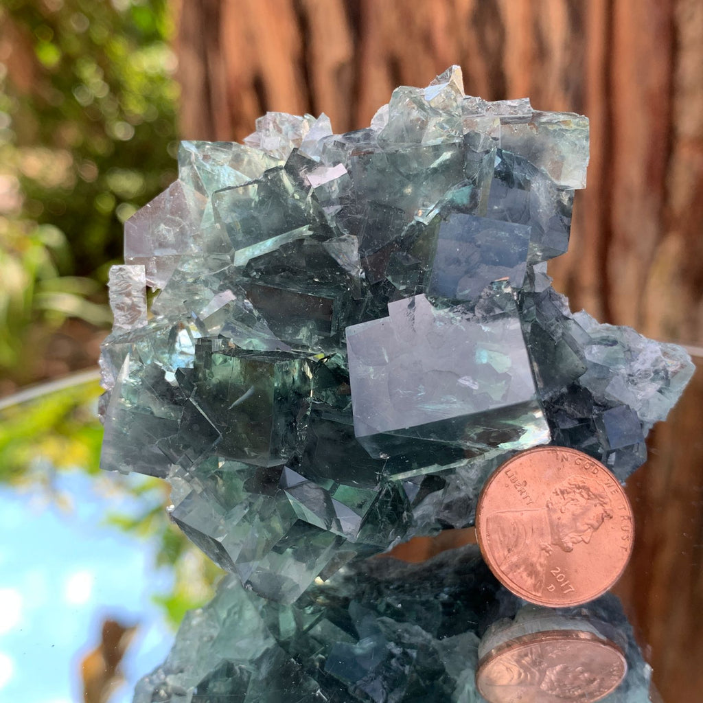 7.5cm 168g Clear Green Fluorite from Xianghualing, China