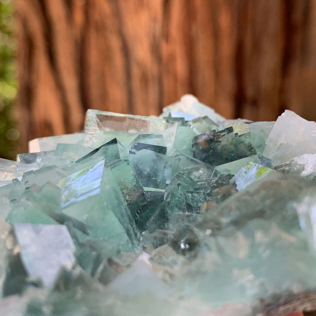 8.5cm 180g Clear Green Fluorite from Xianghualing, China