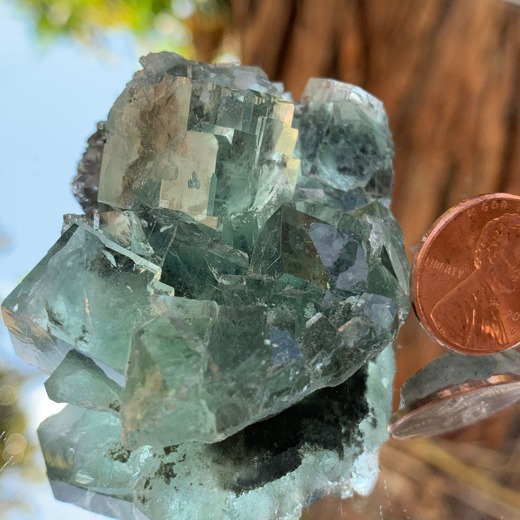 5.5cm 76g Clear Green Fluorite from Xianghualing, China