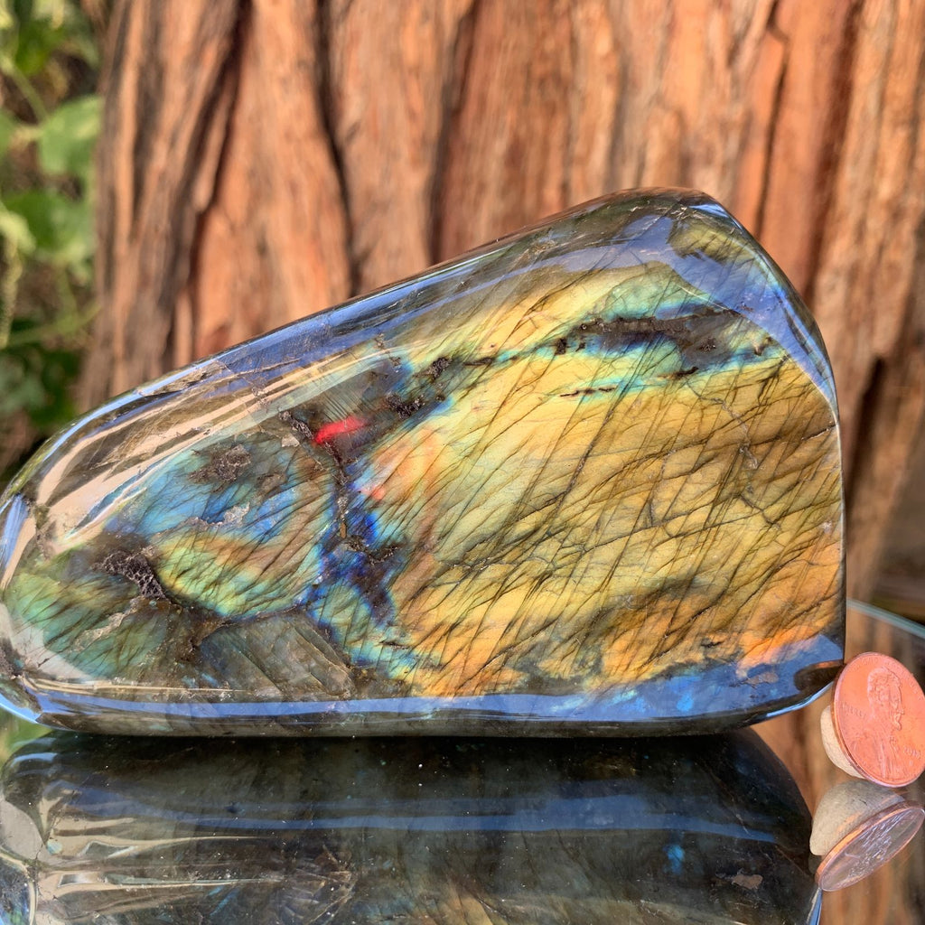 12.5cm 928g Polished Labradorite from Madagascar