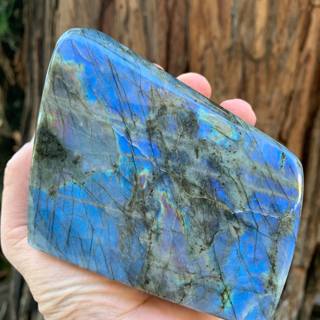 10.5cm 984g Polished Labradorite from Madagascar
