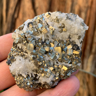 7cm 158g Pyrite, Clear Quartz from Morocco
