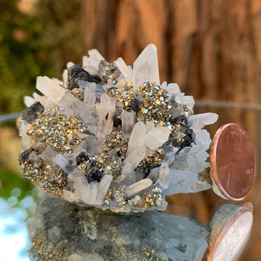 6.5cm 102g Pyrite, Clear Quartz on Galena Matrix from Huaron, Peru