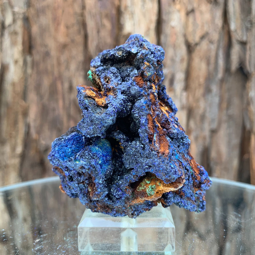6.5cm 124g Azurite from Sepon Mine, Laos